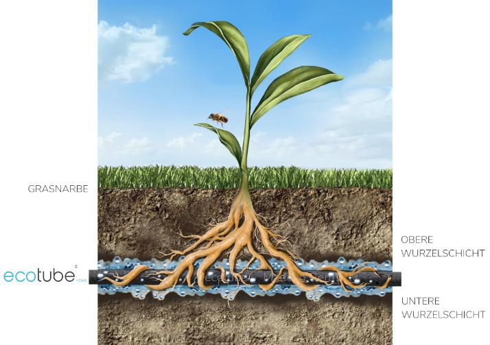 Bewässerung mit ecotube